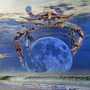 Blue Moon Crab Poster