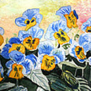 Blue Pansy Poster