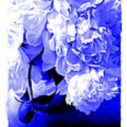 Blue Peony Poster