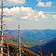 Blue Ridge Parkway Art-trees And Mountains Poster