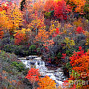 Blue Ridge Parkway Waterfall In Autumn Poster