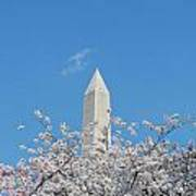 Blue Skies With Washington Monument Poster