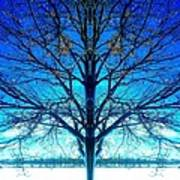 Blue Winter Tree Poster