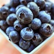 Blueberries Closeup Poster