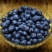 Blueberry Elegance Poster by Andee Design