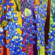 Bluebonnet Garden Poster