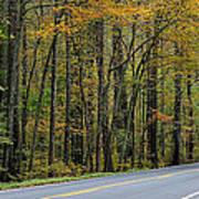 Blueridge Parkway Virginia Poster