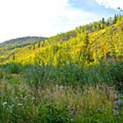 Bluff Overlooking Our Campsite By Stewart River Along Klondike Highway-yt Poster