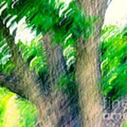 Blurred Pecan Poster