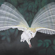 Blurred Wings Poster