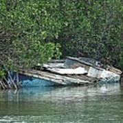 Boat Abandoned In The Mangroves Long Island Bahamas Poster