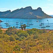 Boats In San Carlos Harbor-sonora-mexico Poster