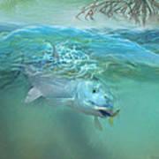Bone Fish Poster