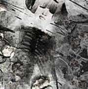 Bones 1 Poster