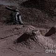 Bones At Mud Pot Area I I Poster