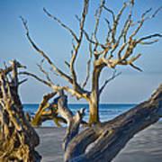 Boneyard Beach 3 Poster