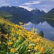 M-05921-bonneville Mountain Reflected In Wallow Lake Poster
