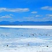 Bonneville Salt Flats After The Rain Poster