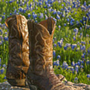Boots And Bluebonnets Poster
