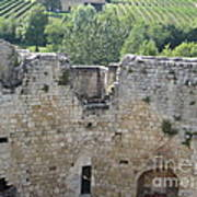 Bordeaux Castle Ruins With Vineyard Poster