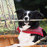 Border Collie At Painting Easel Poster
