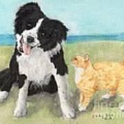 Border Collie Dog Orange Tabby Cat Art Poster