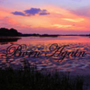 Born Again  Poster by Sheri McLeroy