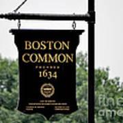 Boston Common Ma Poster