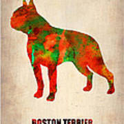 Boston Terrier Poster Poster by Naxart Studio
