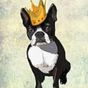 Boston Terrier With A Crown Poster by Kelly McLaughlan