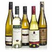 Bottles Of New Zealand Wine Poster