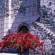 Bougainvillea And Stone Wall Poster