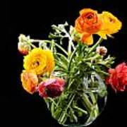 Bouquet Of Ranunculus Poster