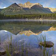 Bow Range And Herbert Lake Banff Poster