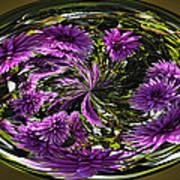Bowl Of Dahlias Poster