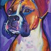 Boxer Dog Portrait Poster by Robyn Saunders
