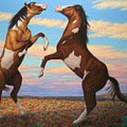 Boxing Horses Poster