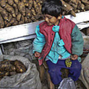 Boy With Grapes - Cusco Market Poster