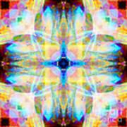 Brainbow Mandala Poster