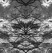 Branches And Clouds Mirrored Poster