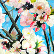 Branches Of Almond Tree Poster