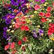 Breckenridge Bouquet Poster