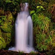 Bridal Dress. Waterfall At Benmore Botanical Garden. Nature Of Scotland Poster