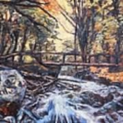 Morning Bridge In Woods Poster