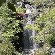 Bridge Over The Falls Poster