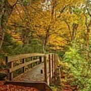 Bridge To Eden Poster