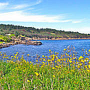 Brier Island In Digby Neck-ns Poster