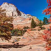 Bright Fall Colors At Zion Poster