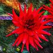 Brilliance In An Autumn Garden - Red Dahlia Poster