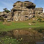 Brimham Rocks Reflection Poster